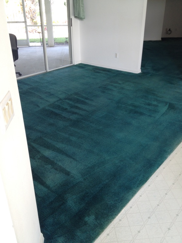 FULL COLOR CARPET DYEING - AFTER