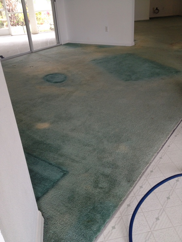 FULL COLOR CARPET DYEING - BEFORE