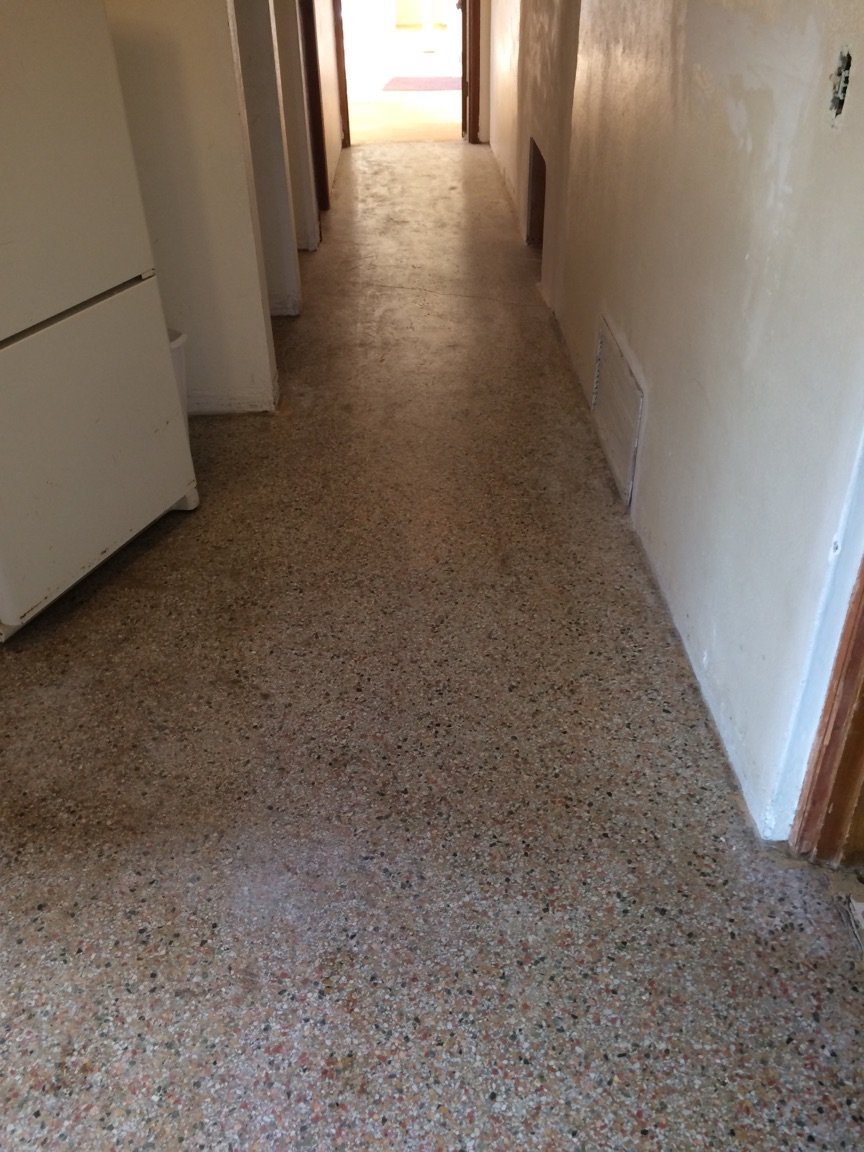 TERRAZZO CLEANING & SEALING - BEFORE
