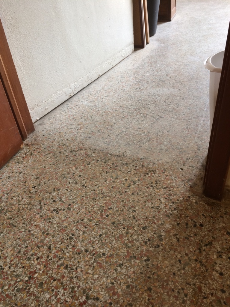 TERRAZZO CLEANING - BEFORE & AFTER