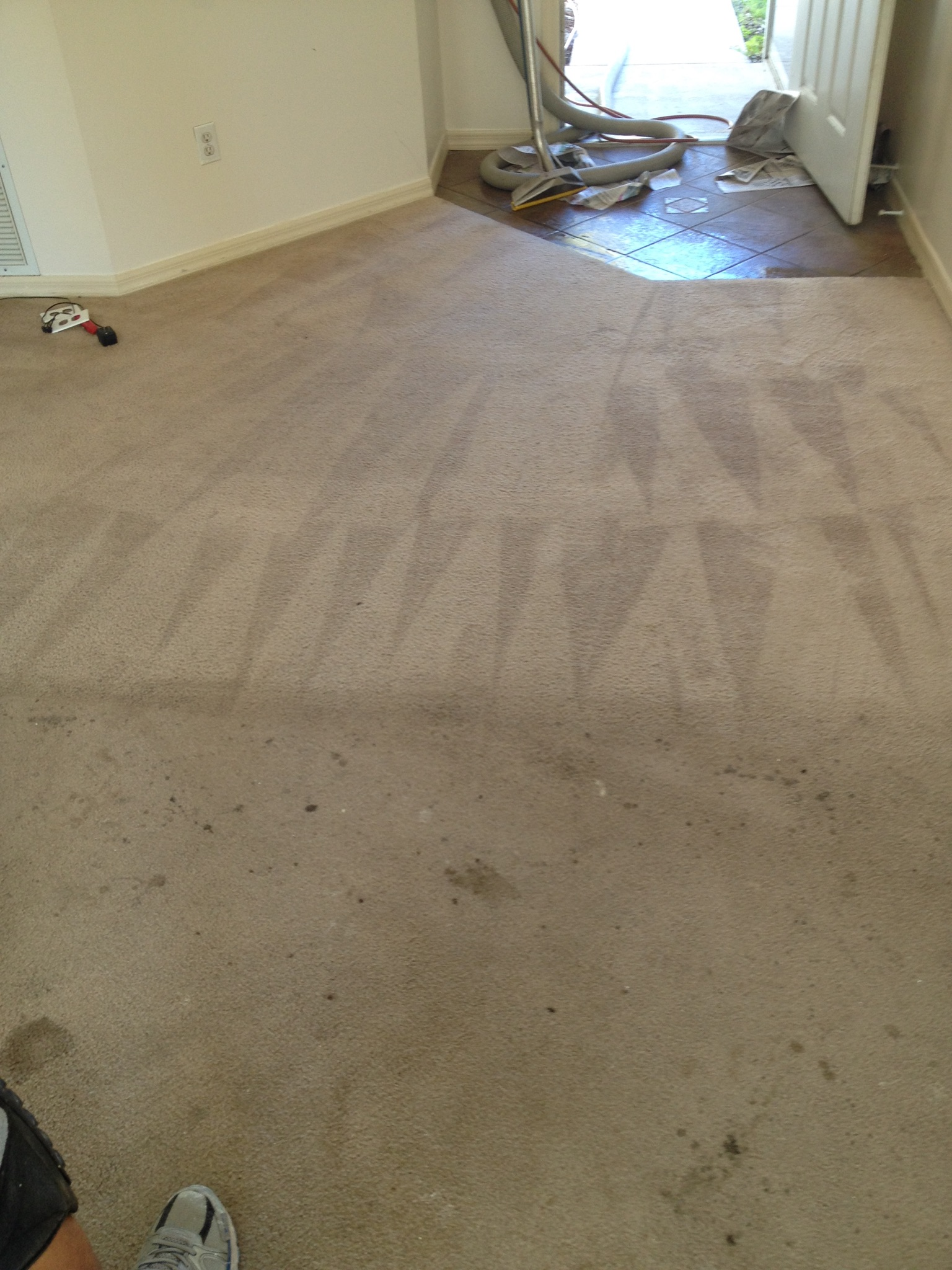 CARPET CLEANING - DURING